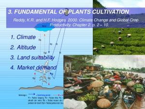 3. FUNDAMENTAL OF PLANTS CULTIVATION