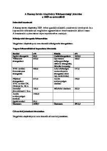 A Kaszap István Alapítvány Közhasznúsági Jelentése a 2009-es esztendőről