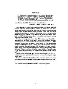 ABSTRAK. GAMBARAN HISTOPATOLOGI LAMBUNG MENCIT GALUR Swiss Webster JANTAN PASCA PEMBERIAN MINYAK BUAH MERAH (Pandanus conoideus Lam