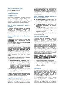 Allianz Casco biztosítás