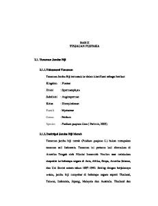 BAB II TINJAUAN PUSTAKA. Tanaman Jambu Biji termasuk ke dalam klasifikasi sebagai berikut: