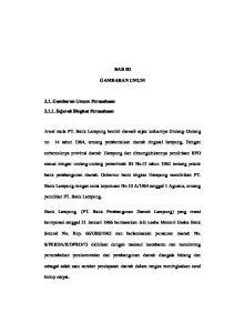 BAB III GAMBARAN UMUM. Awal mula PT. Bank Lampung berdiri diawali sejak keluarnya Undang-Undang