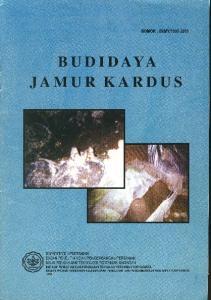 BUDIDAYA JAMUR KARDUS