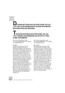 DE DIONE-RATTENSLANG (ELAPHE DIONE, PALLAS THE DIONE RATSNAKE (ELAPHE DIONE, PALLAS,