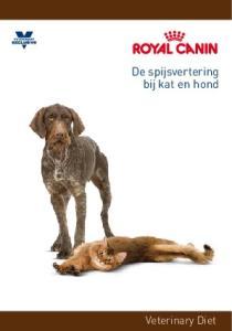 De spijsvertering bij kat en hond