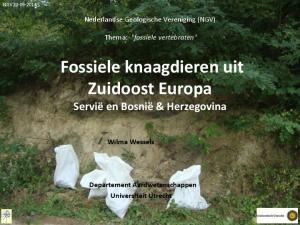 Fossiele knaagdieren uit Zuidoost Europa Servië en Bosnië & Herzegovina
