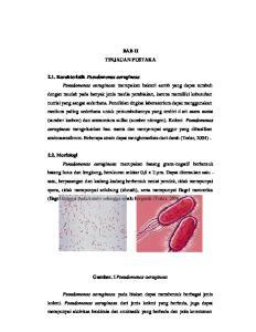 Gambar. 1Pseudomonas aeruginosa