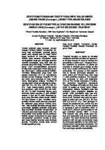 IDENTIFIKASI PERUBAHAN FENOTIP PADA EMPAT GALUR INBRED JAGUNG PAKAN (Zea mays L.) AKIBAT PERLAKUAN KOLKISIN