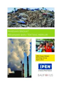 IPEN Heavy Metals Working Group. IPEN Heavy Metals Working Group. April 2013