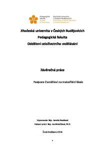 Jihočeská univerzita v Českých Budějovicích Pedagogická fakulta Oddělení celoživotního vzdělávání. Závěrečná práce
