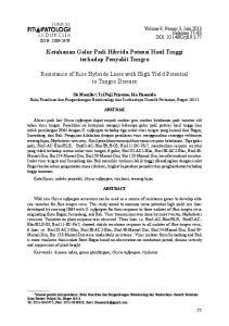 Ketahanan Galur Padi Hibrida Potensi Hasil Tinggi terhadap Penyakit Tungro