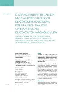 Klasifikace intraepiteliálních neoplazií předcházejících dlaždicovému karcinomu penisu a jejich analogie s prekancerózami dlaždicových karcinomů vulvy