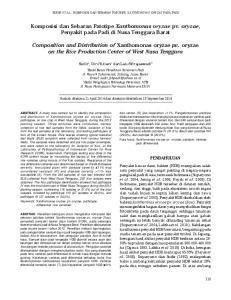 Komposisi dan Sebaran Patotipe Xanthomonas oryzae pv. oryzae, Penyakit pada Padi di Nusa Tenggara Barat
