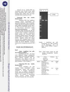M 1 2. ~1,9 kb HASIL DAN PEMBAHASAN