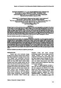 Manzila et al Karakteristik β-1,3-1,4-glukanasebakteri Endofitik Burkholderia cepacia Isolate76 Asal Tanaman Padi