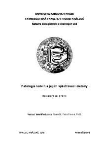 Patologie ledvin a jejich vyšetřovací metody