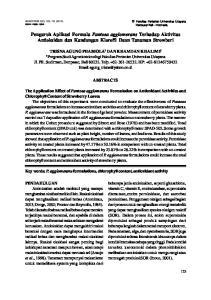 Pengaruh Aplikasi Formula Pantoea agglomerans Terhadap Aktivitas Antioksidan dan Kandungan Klorofil Daun Tanaman Strowberi