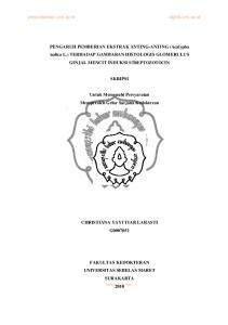 PENGARUH PEMBERIAN EKSTRAK ANTING-ANTING (Acalypha indica L.) TERHADAP GAMBARAN HISTOLOGIS GLOMERULUS GINJAL MENCIT INDUKSI STREPTOZOTOCIN SKRIPSI