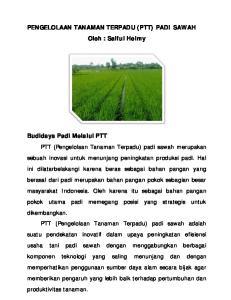 PENGELOLAAN TANAMAN TERPADU (PTT) PADI SAWAH Oleh : Saiful Helmy