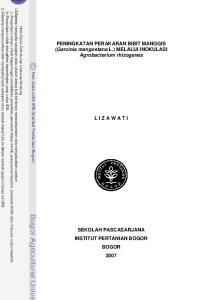 PENINGKATAN PERAKARAN BIBIT MANGGIS (Garcinia mangostana L.) MELALUI INOKULASI Agrobacterium rhizogenes L I Z A W A T I