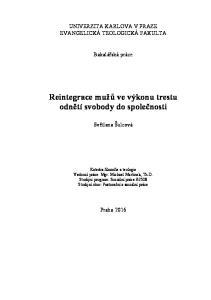 Reintegrace mužů ve výkonu trestu odnětí svobody do společnosti
