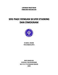 SDS PAGE DENGAN SILVER STAINING DAN ZIMOGRAM