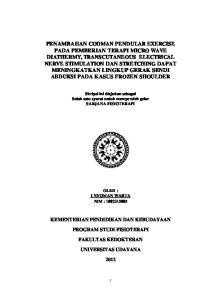 Skripsi ini diajukan sebagai Salah satu syarat untuk memperoleh gelar SARJANA FISIOTERAPI OLEH : I NYOMAN WARTA NIM :