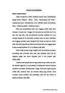 TINJAUAN PUSTAKA. Dalam Poedjiwidodo (1996), klasifikasi tanaman kakao diklasifikasikan