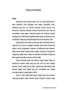 TINJAUAN PUSTAKA. menimbulkan dampak yang merugikan bagi manusia sendiri (Mulyanto, 2007). bahan organik karena faktor terbawa arus (Widi, 2000)