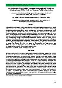 Uji Antagonisme Jamur Endofit Terhadap Cercospora oryzae Miyake dan Culvularia lunata (Wakk) Boed. dari Tanaman Padi di Laboratorium