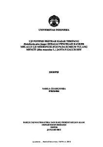 UNIVERSITAS INDONESIA UJI POTENSI EKSTRAK KASAR TERIPANG ELALUI UJI MIKRONUKLEUS PADA SUMSUM TULANG MENCIT. (Mus musculus L.)) JANTAN GALUR DDY
