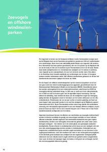 Zeevogels en offshore windmolenparken